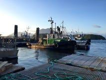 Boote im Hafen in Tofino, Kanada, am sonnigen Sommerabend Stockbild
