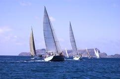 Boote im Regatta Lizenzfreie Stockfotos
