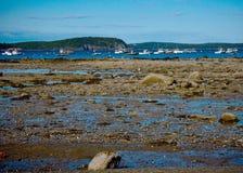 Boote im Stangen-Hafen Maine bei Ebbe Lizenzfreie Stockfotos