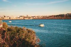 Boote in Marina del Ray, Kalifornien lizenzfreies stockbild