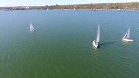 Boote mit weißen Segeln im Meer stock video