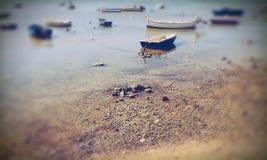 Boote nähern sich Strand Stockbilder
