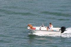 Bootfahrt-Hund Lizenzfreies Stockbild