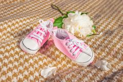 Babys booteeson a beige plaid. Children`s shoes stock image