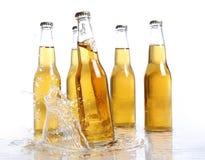 bootles пива брызгают воду Стоковые Фото