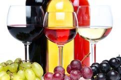 Bootles και ποτήρια του κρασιού με τα μαύρα, κόκκινα και άσπρα σταφύλια Στοκ Εικόνες