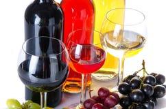 Bootles y vidrios de vino con las uvas negras, rojas y blancas Imágenes de archivo libres de regalías