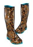 Boots грязь иллюстрация штока