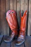 boots ковбой старый Стоковое Фото