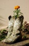boots ковбой Стоковая Фотография RF