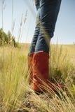 boots красный цвет стоковые фото