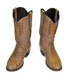 boots крокодил ковбоя Стоковая Фотография RF