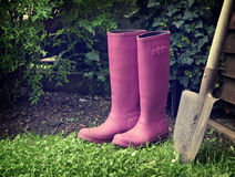 Boots. Pink boots with spade in garden Royalty Free Stock Photos