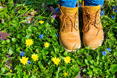 Boots. On a background of a blossoming meadow Stock Image