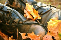 Boots covered in autumn leaves Royalty Free Stock Photography