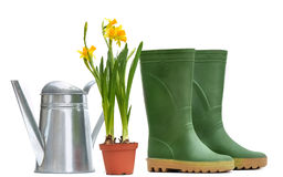 Boots, daffodils and watering can Royalty Free Stock Images