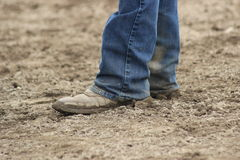 Boots. Dirty cowboy boots in the arena royalty free stock photos