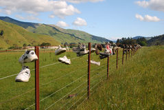 Boots on a farm fence in Marlborough Sounds Stock Image
