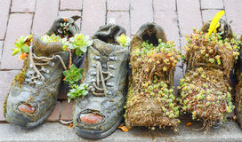 Boots flowerpots Stock Photos