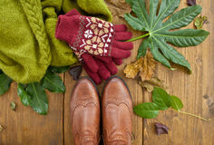 Boots, gloves and scarf Royalty Free Stock Photo