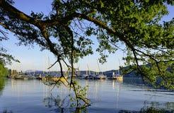 Boots-Hafen Aargau-Berichts-Schweizer Bezirk Hallwilersee Tennwil lizenzfreie stockbilder