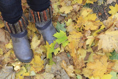 Boots and leaves at autumn Royalty Free Stock Images