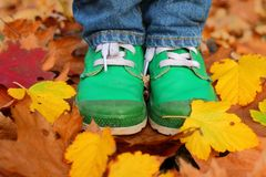 Boots and leaves Stock Photos