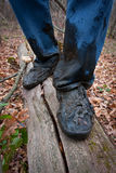 Boots men in the dirt on a log in forest Stock Images