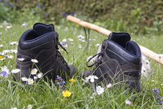 Boots. New leather hiking boots in a meadow Stock Images
