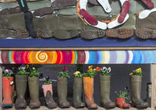 Boots. Rubber boots full of beautiful colorful flowers violets Stock Photos