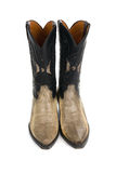 Boots from a skin of a snake Royalty Free Stock Image