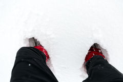 Boots in snow, shoes on a white snow during hiking in winter Royalty Free Stock Photo
