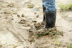 Boots soiled filled with soil densely. Royalty Free Stock Images