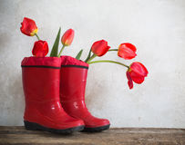 boots with tulios on grunge background Stock Photo