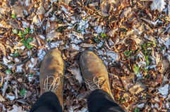 Boots on the yellow mapple leaves with first snow on it Stock Photography