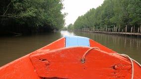 Bootsansicht, die vorwärts fast Mangrovenwald in der Flussmündung die Konservierungsseenaturumwelt bewegt stock video footage