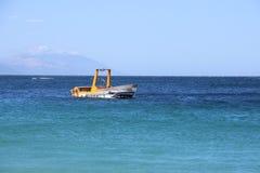 Bootshaifisch im Foto lizenzfreies stockbild