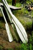 Bootspaddel Stockbilder