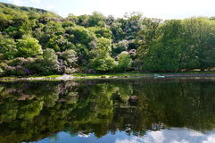 Bootsreise in Killarney Irland Lizenzfreie Stockfotografie