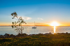 Bootssegeln an Alameda-Küstenlinie Lizenzfreies Stockbild