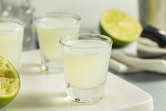 Boozy Lime  and Vodka Kamikaze Shots Royalty Free Stock Images