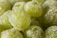 Boozy Sugared Prosecco Grapes. In a Bowl for Dessert Royalty Free Stock Photography