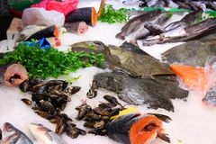 Boqueria fish market Royalty Free Stock Photography