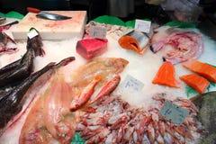 Boqueria. Market in Barcelona. Fresh fish price tags: tuna, salmon, hake, squids and four-spot megrim flatfish Stock Photos