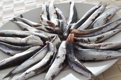 Boquerones espagnols crus, anchois typiques en Espagne Photos stock