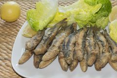 Boquerones a fait frire Photo stock