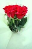 Boquet de longues roses de rouge de cheminée image libre de droits