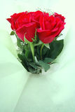 Boquet of long stem red roses Royalty Free Stock Image