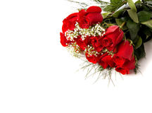 Boquet Or Red Roses On White Royalty Free Stock Images