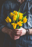 Boquet of yellow tulips in hands Royalty Free Stock Photos
